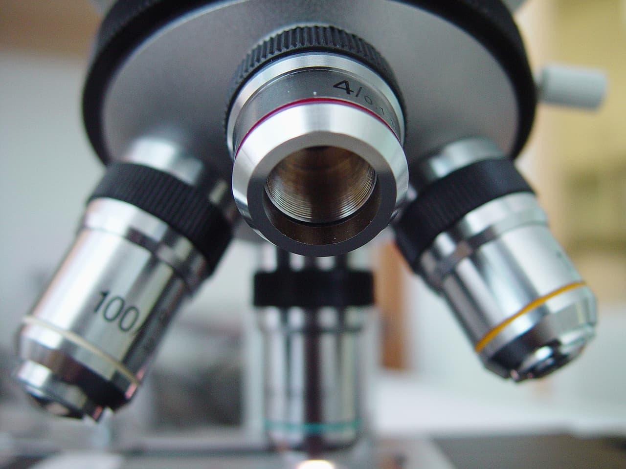 assogomma formazione microscopio industriagomma marcelo terraza freeimages